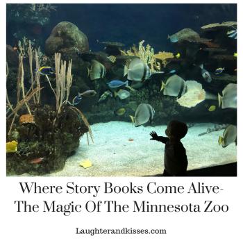 Where Story Books Come Alive- The Magic Of The Minnesota Zoo6