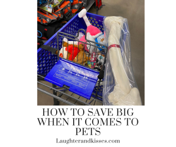 How to save big when it comes to pets8